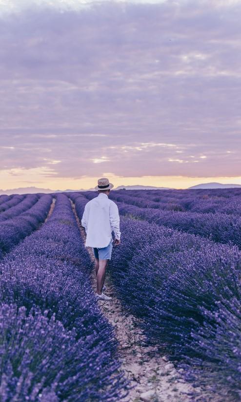 Пресет для Lightroom от Юлии Бездарь Provence